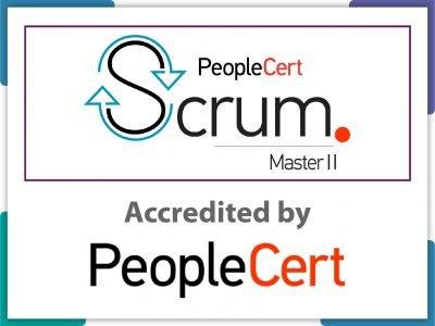 Scrum Master 2-133