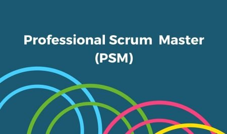 How to become a Professional SCRUM Master